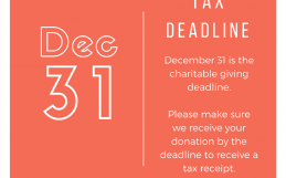 Tax Deadline is December 31
